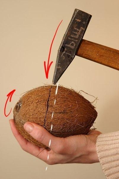 Что можно сделать с кокосом в домашних условиях - ПРОСПЕКТ